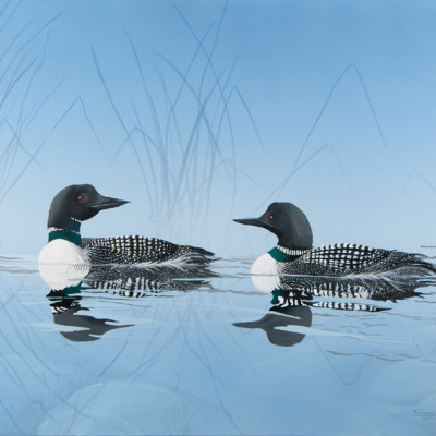 Loons in the Reeds
