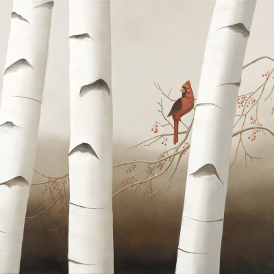 Northern Cardinal and Birch
