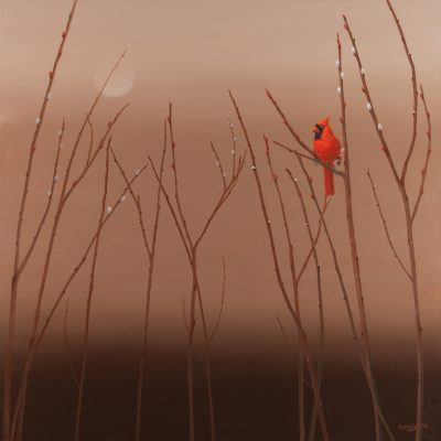 Pussywillows and Red Cardinal_30
